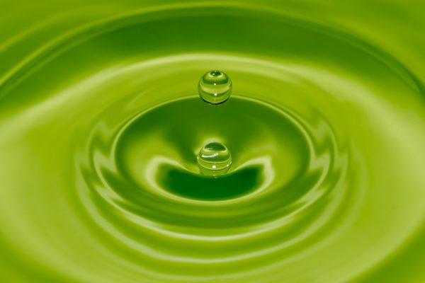 VP WATCHLIST PROGRESS REPORT: Chinook Therapeutics (KDNY), INVO Bioscience (INVO),...