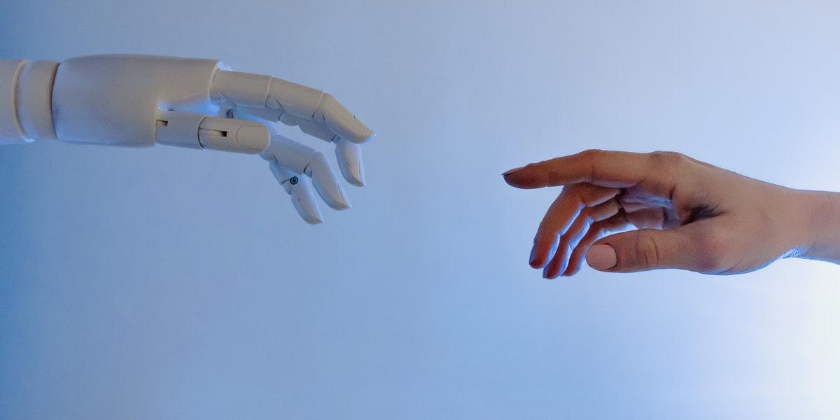Tesla human robot